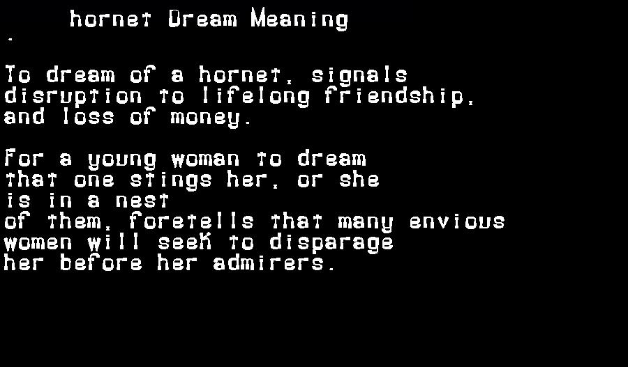 dream meanings hornet