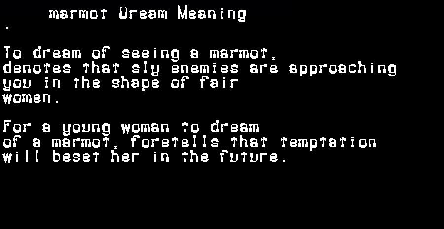 dream meanings marmot